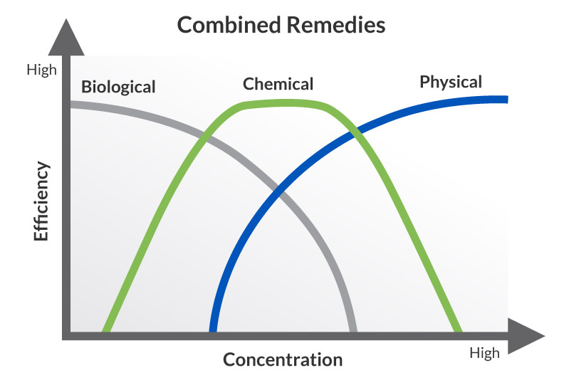 Combined-Remedies-Chart_Regenesis-web